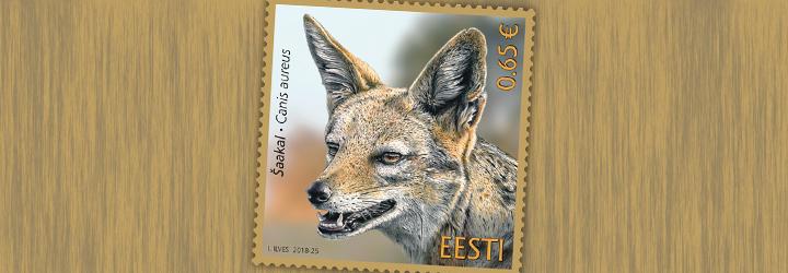 畅销 爱沙尼亚 邮票