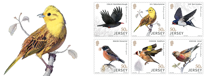 Bestselling Jersey Stamps
