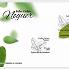 Fulles d'arbre - Noguer