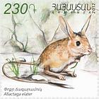 Flora y Fauna de Armenia 2012