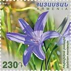 2018 Flora y Fauna de Armenia - Ixiolirion Montanum y Mustela Nivalis