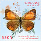 Flora and Fauna of Armenia (330) - Tomares romanovi