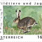 Wild animals and hunting - Brown Hare