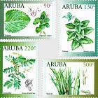 Plantes médicinales 2019