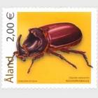 Beetles 2006