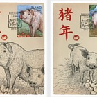 2019 Lunar New Year - Year of the Pig
