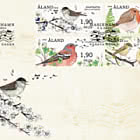 Franking Labels - Songbirds