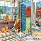 Gato Tigre