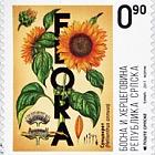 Flora 2017 - Sunflower
