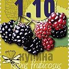 Forest Fruit 2016- Blackberry