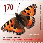 Butterflies - Aglais Urticae