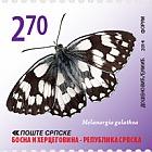 Butterflies - Melanagria Galathea