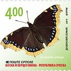 Butterflies - Nymphalis Antiopa