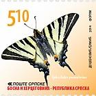 Butterflies - Iphiclides Podalirius