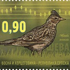 Fauna 2015 - Birds - Lark