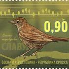 Fauna 2015 - Birds - Nightingale