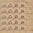 Fauna 2013 - Bats