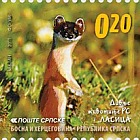 Wild Animals - Weasel