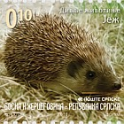 Wild Animals 2010 - Hedgehog