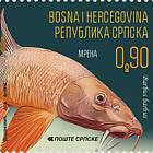 2019 Fauna
