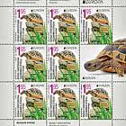 Europa 2021 - Endangered National Wildlife - Hermann's Tortoises
