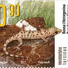 Fauna - Mediterranean House Gecko