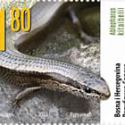 Fauna - The Short-Legged Lizard