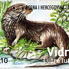 Fauna 2013