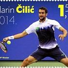 Marin Cilic 2014