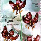 Flora 2014