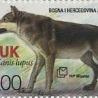 Fauna 2015