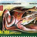 Fauna 2016