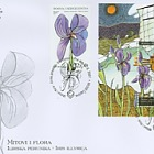 Myths and Flora 2007 - The Illyrian Iris in Myths