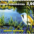 2006 World Swamp Protection Day Hutovo Blato