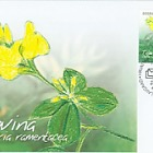 Flora 2005 - Thorn Bush - Maxi Card