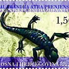 Fauna 2004 - The Black Salamander of Prenj