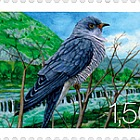 Fauna 2009 - (Common Cuckoo)