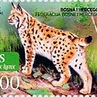 Fauna 2011