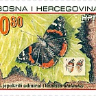 Fauna 2002 - Red Admiral