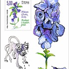 Myths and Flora 2019 - Cerberus and Aconitum Napellus