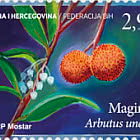 Flora 2019