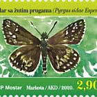 Fauna 2020. - Yellow-Banded Skipper