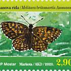 Fauna 2020 - Assmann's Fritillary