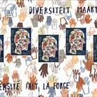 La Diversidad hace Fuerza