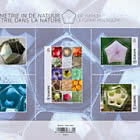 Geometry in Nature - The Pentagonal Shape
