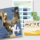 Year Pack 2014 (Saba)