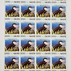 Sea Bird Sheetlet (Saba)