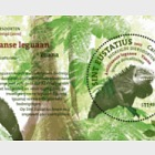 Endangered Species - Reptile of St. Eustatius