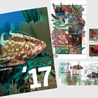 Saba 2017年全年邮票