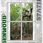 Forêt Tropicale - (St. Eustatius)